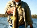 Glen - 22 inch Walleye