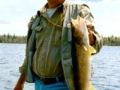 Glen - 25 inch Walleye