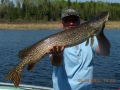 Peffley_s patron with large pike8