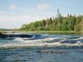 normal_1st rapids
